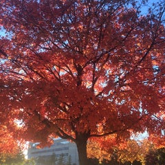 Photo taken at Coover Hall by Tuba K. on 10/15/2014