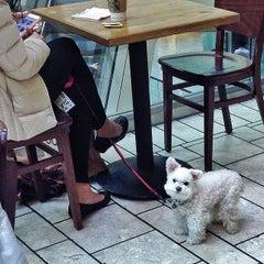 Photo taken at Starbucks by Gary S. on 2/3/2014