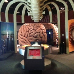 Photo taken at Health Museum of Houston by Анна Ю. on 2/28/2013
