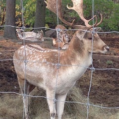 Photo taken at Smolak Farms by Gwyn B. on 10/25/2014