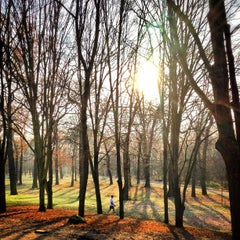 Photo taken at Bois de Boulogne by Bois H. on 12/18/2012