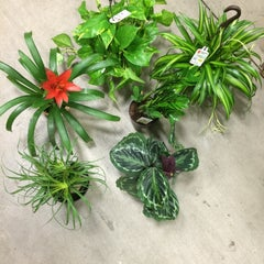 Photo taken at Lowe's Home Improvement by Mary on 1/18/2015