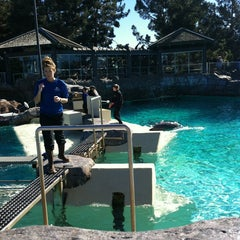 Photo taken at Dolphin Point by Zoe <3 on 1/21/2013