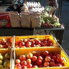 Photo taken at Dunedin Saturday Farmer's Market by Paul J. on 12/21/2012
