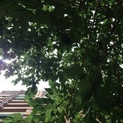 Photo taken at La Rosa Negra by Toni B. on 6/15/2013