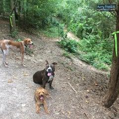 Photo taken at Oakhurst Dog Park by Francisco G. on 8/6/2015