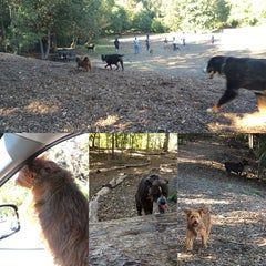 Photo taken at Oakhurst Dog Park by Francisco G. on 10/19/2014