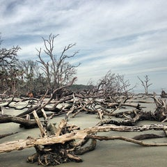 Photo taken at Hunting Island Beach by Neil on 1/13/2013