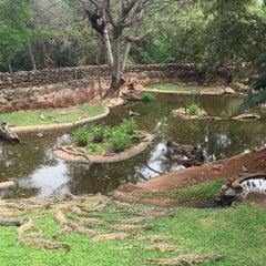 Photo taken at Crocodile Sanctuary by Emel T. on 9/21/2015