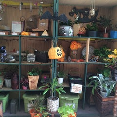 Photo taken at Jungle Java by Dina R. on 10/29/2014
