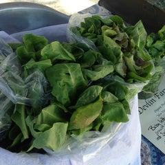 Photo taken at Drake Farmers Market by Sara B. on 6/26/2013