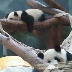 Photo taken at Zoo Atlanta by HikingDiva .. on 9/30/2011