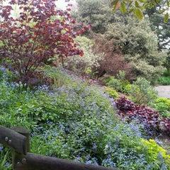 Photo taken at Sheffield Botanical Gardens by Sarah H. on 5/9/2012