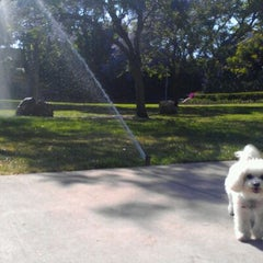 Photo taken at Poinsettia Park Dog Area by Helena * l. on 5/27/2012