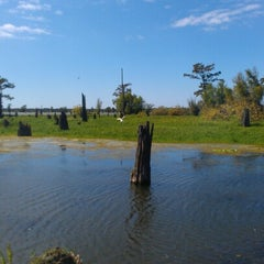 Photo taken at Henderson Swamp by Olivia O. on 10/8/2012