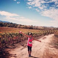 Photo taken at Cougar Vineyard & Winery by Sunaina S. on 11/30/2013