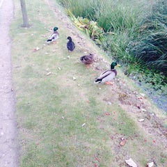 Photo taken at Jubilee Campus by Eliza B. on 9/28/2014