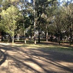Photo taken at Parque De Paseo De Los Pirules by Gary A. on 3/19/2013