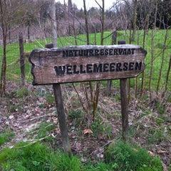 Photo taken at Wellemeersen by Koen N. on 4/17/2013