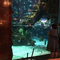 Photo taken at Mermaid Bar by Eeks R. on 5/25/2014