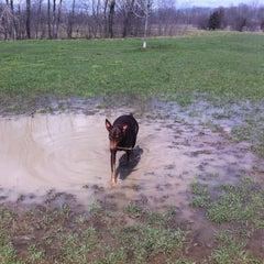Photo taken at Prairie Wolf Dog Exercise Area by Jason R. on 4/25/2013