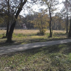Photo taken at Paul G. Boorman Trail by Peter M. on 11/19/2012