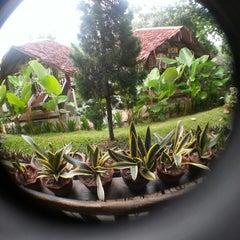 Photo taken at Kayu Manis Garden Resto & Gallery by Wiwien A. on 5/20/2014