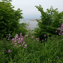 Photo taken at South Shore Park by Serina C. on 6/10/2013