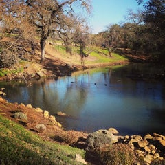 Photo taken at Domaine Chandon by Rochelle N. on 1/19/2013