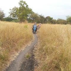 Photo taken at Taman Nasional Baluran (Baluran National Park) by Roosmitha D. on 6/12/2014