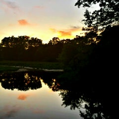 Photo taken at Mass Audubon Ipswich River Wildlife Sanctuary by Michelle P. on 6/21/2014