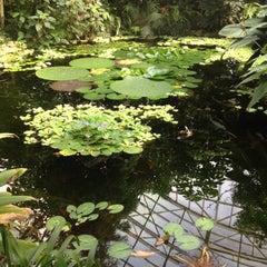 Photo taken at Botanická zahrada by Tomáš H. on 8/24/2013