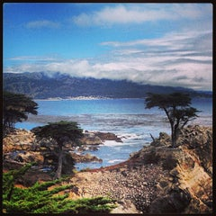 Photo taken at 17 Mile Drive by Daniela R. on 6/25/2013