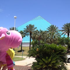Photo taken at Moody Gardens Aquarium Pyramid by Alex on 6/6/2013
