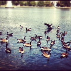 Photo taken at Forest Hill Park by Ronnie B. on 9/23/2012