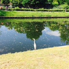 Das Foto wurde bei Neuer See von Mireya Y. am 5/24/2015 aufgenommen