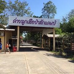 Photo taken at ค่ายลูกเสือป่าสักแคมป์ (Pasak Scout Camp & Resort) by Toyluktao on 12/14/2014