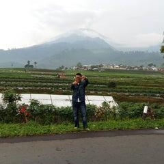 Photo taken at Taman Wisata Air Panas Guci by Didi M. on 3/21/2015