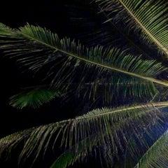 Photo taken at Koh Mook Charlie Beach Resort Trang by Ilya S. on 1/20/2014