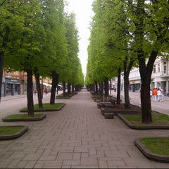Photo taken at Laisvės alėja | Liberty Avenue | Аллея Свободы by Štamgast on 5/12/2013