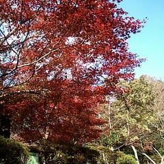Photo taken at 源氏山公園 by yoshi_rin on 11/26/2011