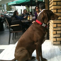 Photo taken at Starbucks by Sophia K. on 3/9/2012