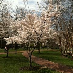 Photo taken at Pratt Institute by Andrea S. on 3/24/2012