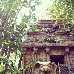 Photo taken at Indiana Jones Adventure by Lauren D. on 3/15/2012