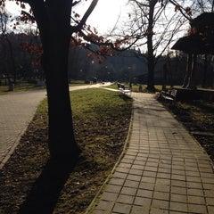 Photo taken at Lesopark Chrasť by Heto on 1/11/2014
