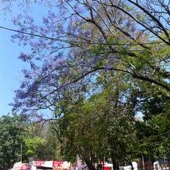Photo taken at Firozabad by Alexandra D. on 4/24/2014