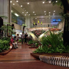 Photo taken at Singapore Changi Airport (SIN) by ShamsulKahar on 11/1/2013
