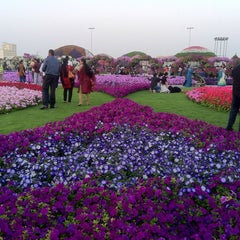 Photo taken at Dubai Miracle Garden by Sadique on 3/1/2013
