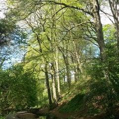 Photo taken at Peasholm Park by Pau L. on 5/2/2014