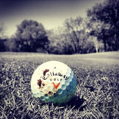 Photo taken at Wolfdancer Golf Club by Mike M. on 3/26/2013
